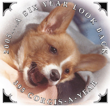 about 395 Corgis-a-Year Calendar